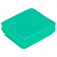 Простыня с бумажным покрытием, 140х80 см, 2-х слойная ламинированная бумага (бумага + полиэтилен), 55г/м2, нестерильная