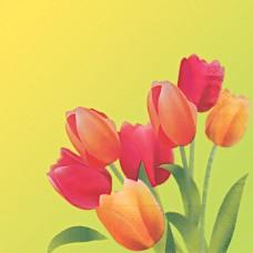 """Салфетки бумажные """"Design"""", Тюльпаны, 3 слоя, 330х330мм 20л в п/п"""