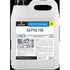 SEPTA 100 универсальный моющий концентрат с содержанием ЧАС, 5л (канистра)